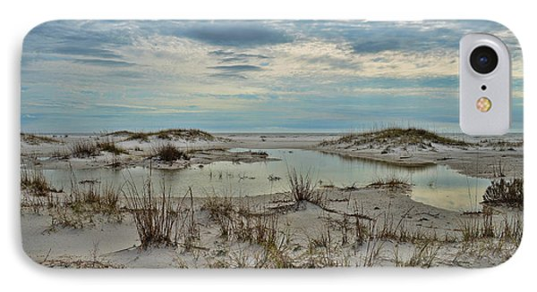 IPhone Case featuring the photograph Coastland Wetland by Renee Hardison