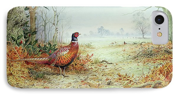Cock Pheasant  IPhone Case by Carl Donner