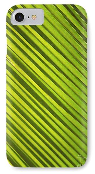 Coconut Palm Phone Case by Brandon Tabiolo - Printscapes