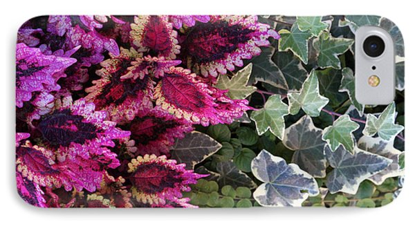 IPhone Case featuring the mixed media Coleus And Ivy- Photo By Linda Woods by Linda Woods
