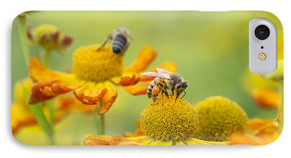 Collecting Nectar IPhone Case by Tim Gainey