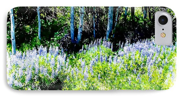 Colorado Apens And Flowers IPhone Case