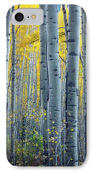 Colorado Aspens Phone Case by Inge Johnsson