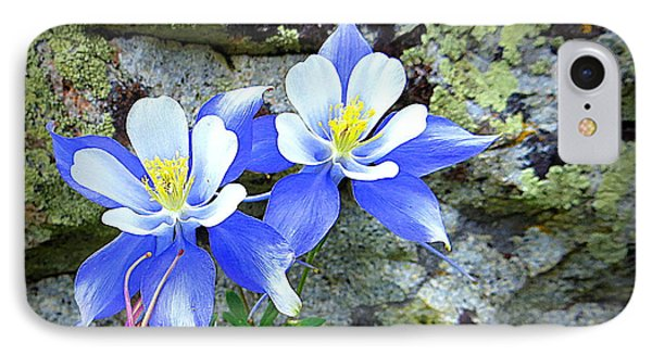 IPhone 7 Case featuring the photograph Colorado Columbines by Karen Shackles