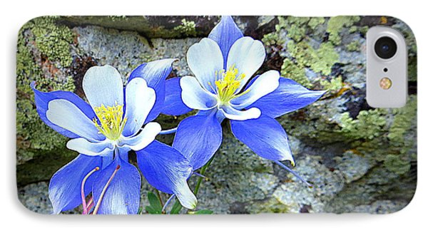 IPhone Case featuring the photograph Colorado Columbines by Karen Shackles