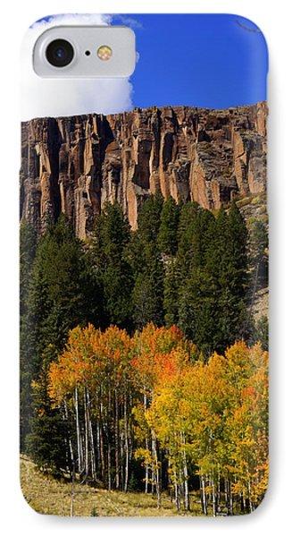 Colorado Fall 4 Phone Case by Marty Koch
