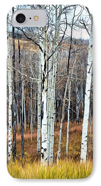 Colorado Fall Aspen IPhone Case
