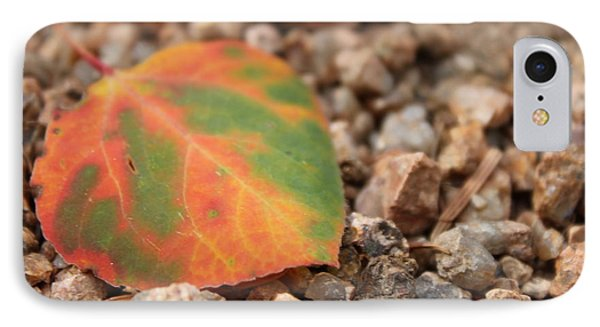Colorado Fall Colors IPhone Case by Christin Brodie