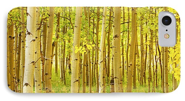 Colorado Fall Foliage Aspen Landscape Phone Case by James BO  Insogna
