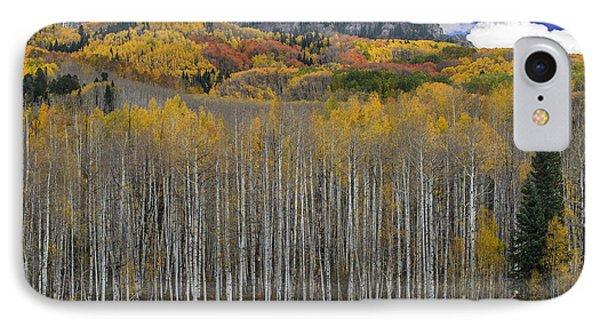 Colorado Splendor IPhone Case by Gary Lengyel