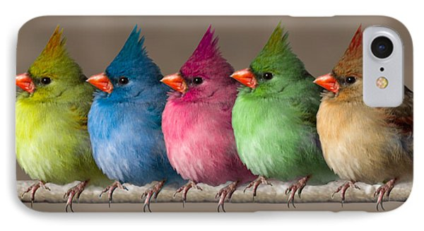 Colored Chicks IPhone Case by John Haldane