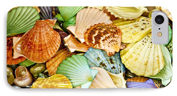 Colored Shells Phone Case by Marilyn Hunt