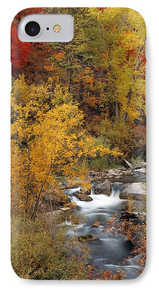 Colorful Canyon IPhone Case by Leland D Howard