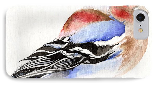 Colorful Chaffinch IPhone Case by Nancy Moniz