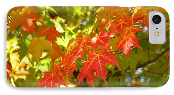 Colorful Fall Leaves Red Nature Landscape Baslee Troutman Phone Case by Baslee Troutman