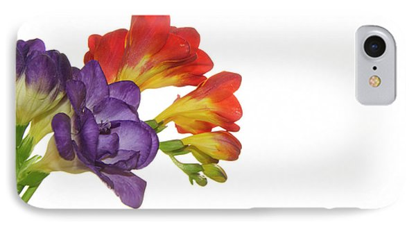 Colorful Freesias IPhone Case by Elvira Ladocki