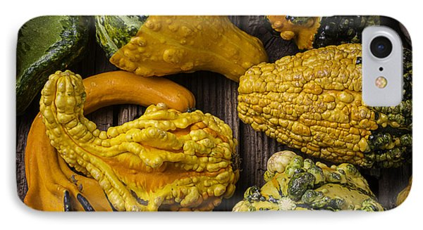 Colorful Gourds IPhone Case by Garry Gay