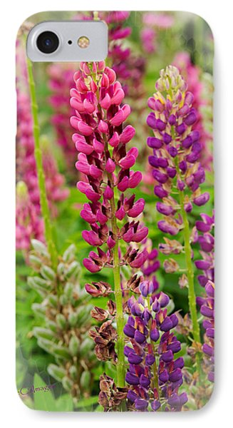 Colorful Lupine IPhone Case