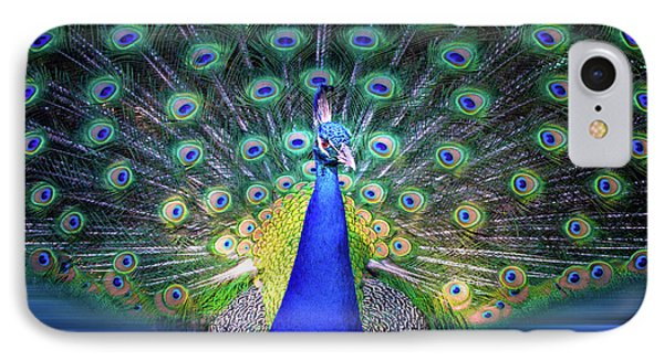 Colorful Peacock Display IPhone Case