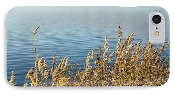 Colorful Reeds IPhone Case by Kennerth and Birgitta Kullman