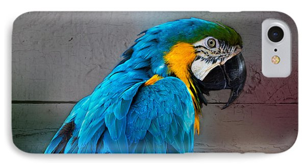 IPhone Case featuring the photograph Colorful by Robert Pilkington
