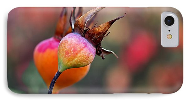 Colorful Rose Hips IPhone Case by Rona Black