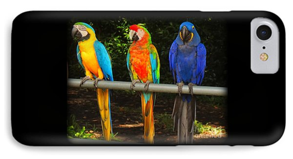 Colorful Trio IPhone Case