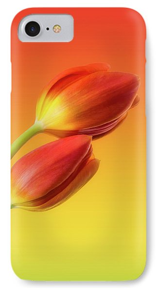 Flowers iPhone 7 Case - Colorful Tulips by Wim Lanclus