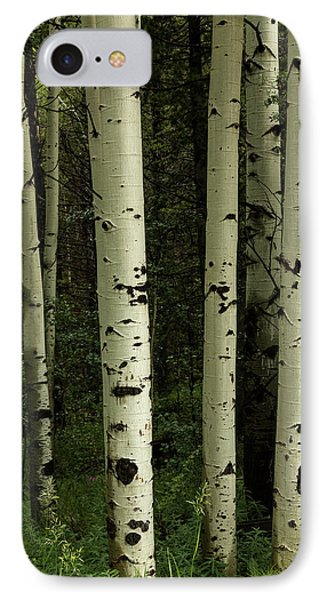 IPhone Case featuring the photograph Colors And Texture Of A Forest Portrait by James BO Insogna