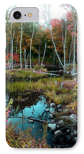IPhone Case featuring the photograph Colors By The Stream by Joseph G Holland