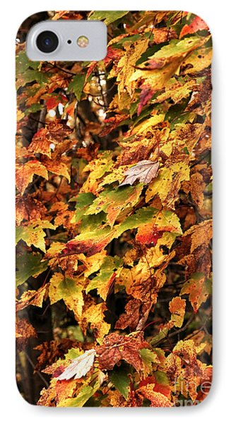 Colors Of Autumn Phone Case by John Rizzuto