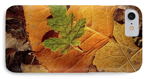 IPhone Case featuring the photograph Colors Of Autumn by Marie Leslie