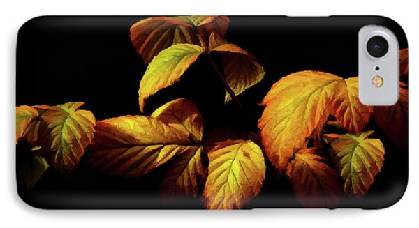 Colors Of Autumn Memories  IPhone Case by David Dehner