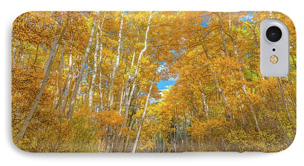 IPhone Case featuring the photograph Colors Of Fall by Darren White