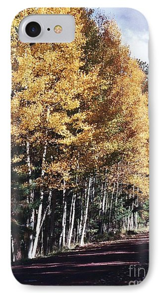 IPhone Case featuring the photograph Colors Of Greer by Juls Adams