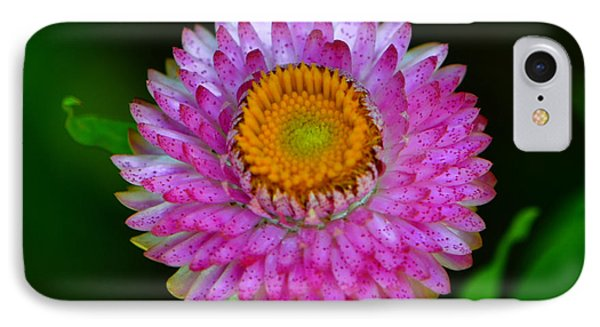 IPhone Case featuring the photograph Colors Of Nature - Grand Opening 001 by George Bostian