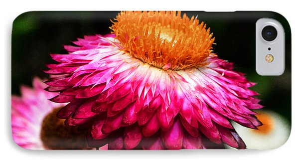 IPhone Case featuring the photograph Colors Of Nature - Grand Opening 002 by George Bostian