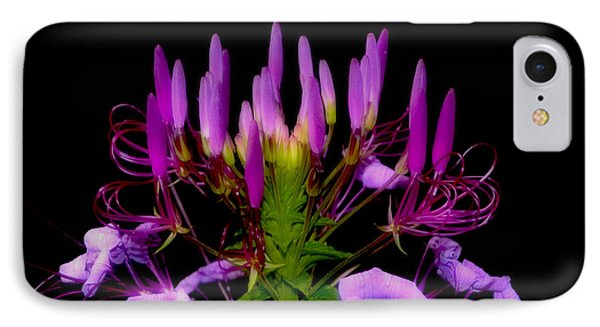 IPhone Case featuring the photograph Colors Of Nature - Lavender 001 by George Bostian