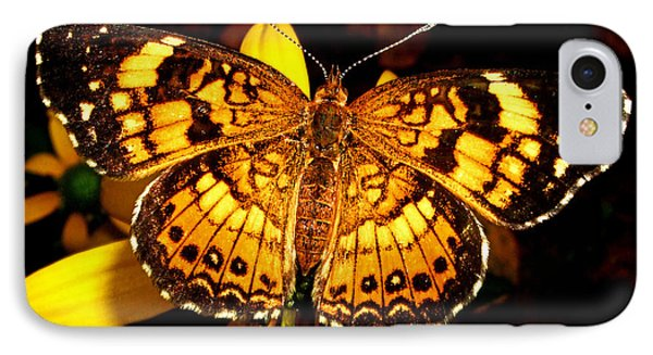 Colors Of Nature - Painted Lady Butterfly 002 IPhone Case by George Bostian