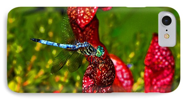 IPhone Case featuring the photograph Colors Of Nature - Profile Of A Dragonfly 003 by George Bostian