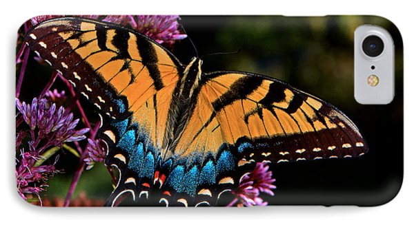 Colors Of Nature - Swallowtail Butterfly 004 IPhone Case by George Bostian