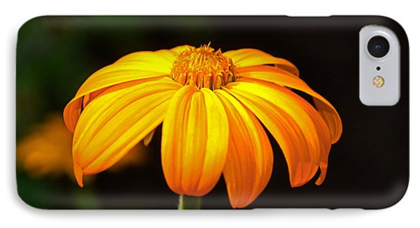IPhone Case featuring the photograph Colors Of Nature - Yellow Flower 020 by George Bostian