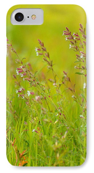 Colors Of Spring IPhone Case by Rachel Mirror