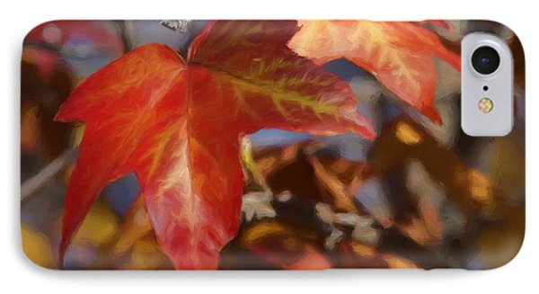 Colors Of The Sycamore IPhone Case by Ernie Echols