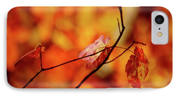 IPhone Case featuring the photograph Colors by Robert Geary