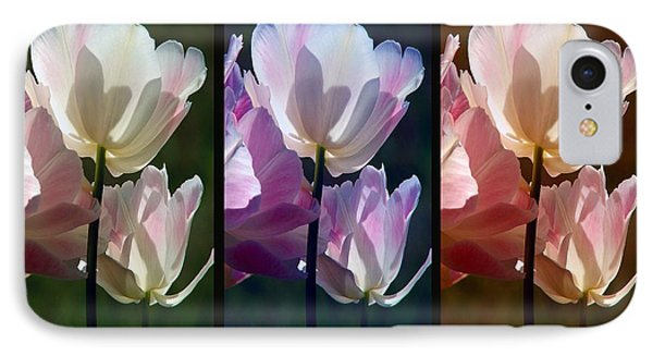 Coloured Tulips IPhone Case by Robert Meanor
