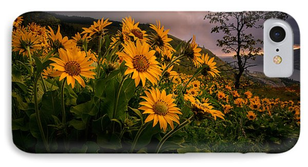 IPhone Case featuring the photograph Columbia Gorge Joy by Dan Mihai