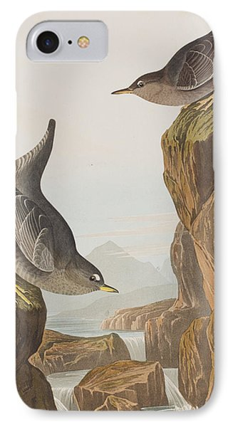 Columbian Water Ouzel Or Arctic Water Ouzel IPhone Case by John James Audubon