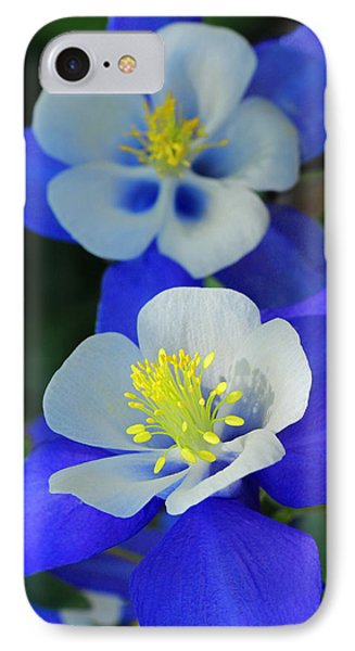 Columbine Day IPhone Case by Iryna Goodall