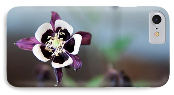 IPhone Case featuring the photograph Columbine by Erin Kohlenberg
